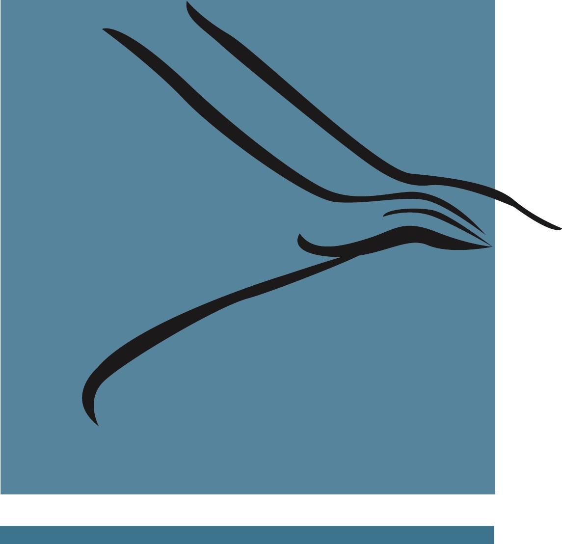 Logo Kinesitherapie Brugge